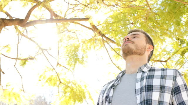 Happy relaxed man breathing fresh air in a park Happy relaxed man breathing deep fresh air standing in a park eyes closed stock videos & royalty-free footage
