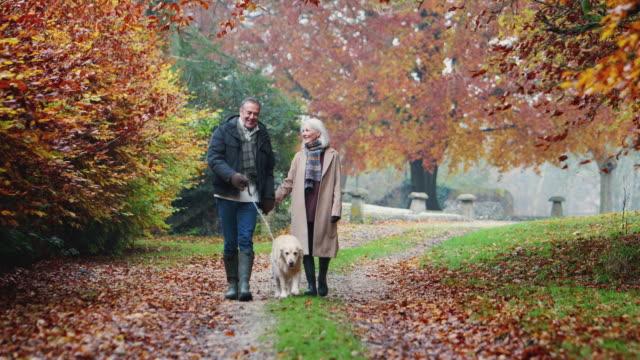 glad pensionerad senior par tar hund för promenad längs vägen på hösten landsbygden tillsammans - senior walking bildbanksvideor och videomaterial från bakom kulisserna