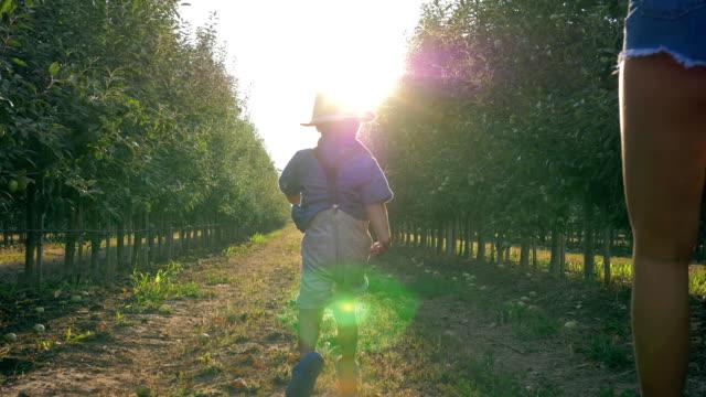 lycklig landsbygdens familj, unga jordbrukare med barn löper genom äppelodling i höst under skördesäsongen - fruktträdgård bildbanksvideor och videomaterial från bakom kulisserna