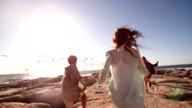 Happy teenager friends enjoys the beach and seagulls video