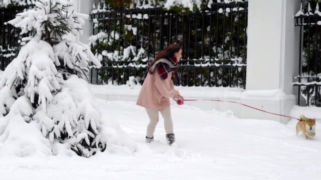 Happy time of dog and woman playing in snow video