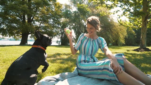 stockvideo's en b-roll-footage met gelukkige vrouw met hond spelen. - sober leven