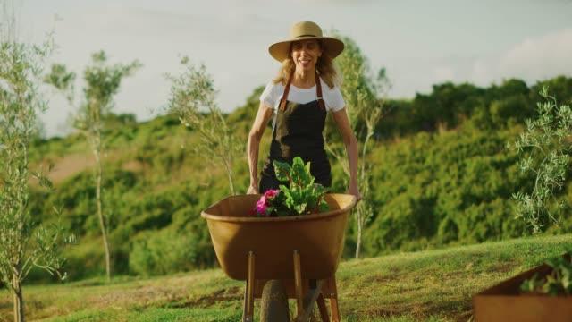 vidéos et rushes de femme heureuse poussant la brouette - jardiner