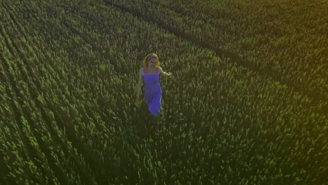 Happy woman running in summer field. Young woman running field video