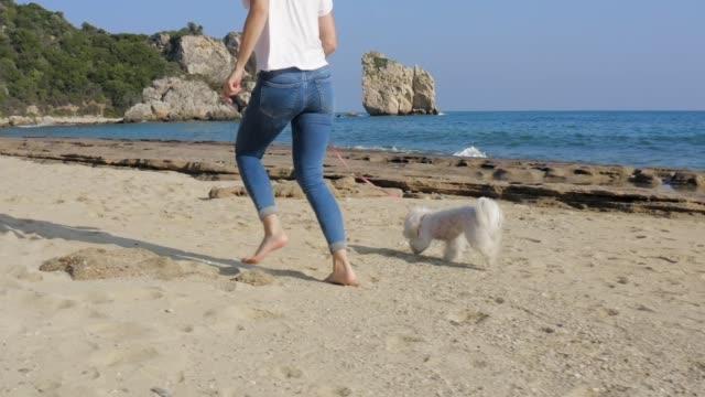 ビーチで犬と一緒に走っている幸せな女性。 - 愛玩犬点の映像素材/bロール