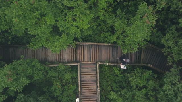 happy woman walking in rainforest drone overhead shot video