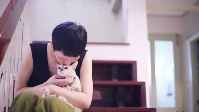 happy woman with cat at home. Pets and people concept happy woman with cat at home. Pets and people concept indulgence stock videos & royalty-free footage