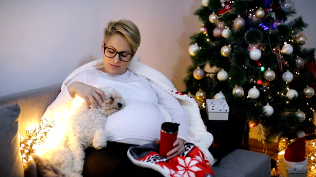 Happy young pregnant woman sitting near the Christmas tree with dog