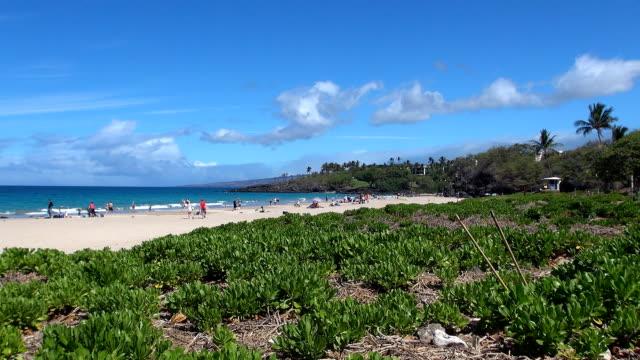 hapuna beach - kohala coast, hawaii - 州立公園 個影片檔及 b 捲影像