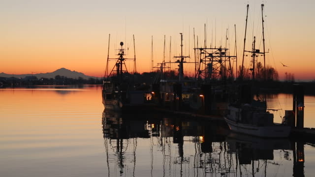 Harbor Sunrise, Steveston video