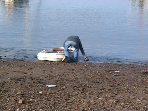 harbour scena 12 pal - uccello acquatico video stock e b–roll