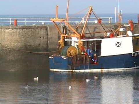 ハーバーシーン 11 (男性動作のボート)pal - 水鳥点の映像素材/bロール