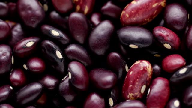 Haricot bean. video
