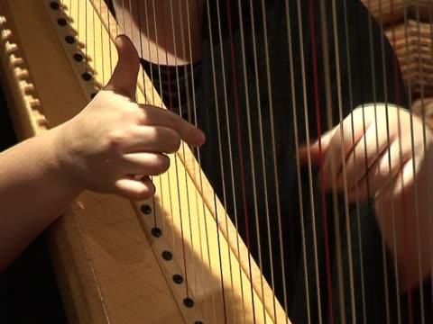 Harpist playing the harp