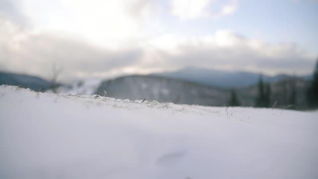Harsh Blizzard Snow Drift. Weather Climate Concept. Slow motion Close up