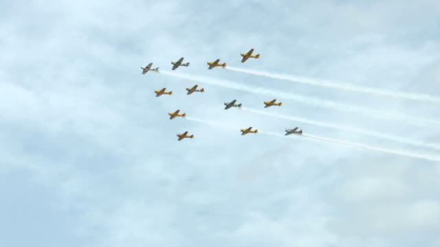 T-6 Harvard / Texan aircraft in formation 24P video