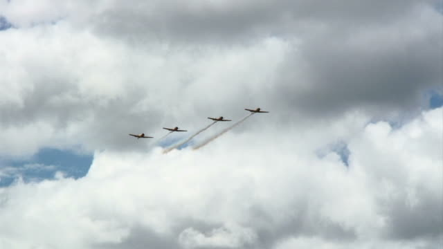 Harvards in Formation video