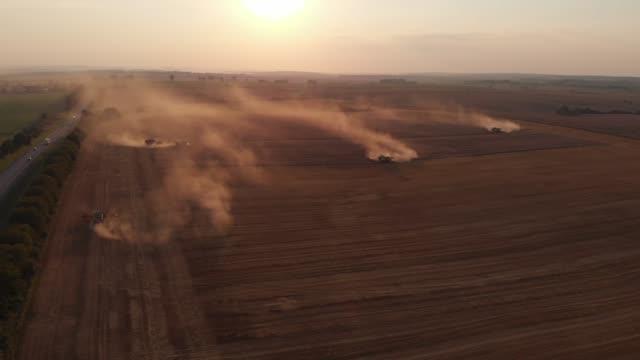 урожай во время летнего заката с полей. многие комбайны собирают пшеницу. вид с воздуха с беспилотника. 4k - сельскохозяйственная машина стоковые видео и кадры b-roll