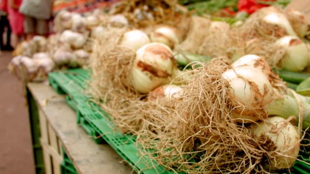 harvest garlic at the farmers market - video