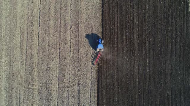 Harvest season. Aerial View of a Combine Harvester gathering the corn crop in the Agricultiral Field After Sunset in Autumn. Agricultural Equipment in Cultivated Land.