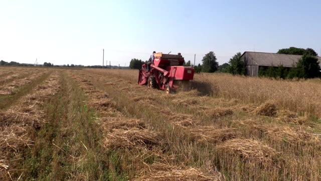 harvester work barley corn field. Activities rural countryside video