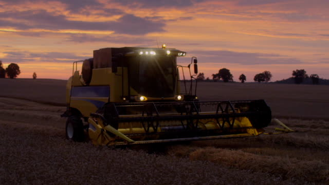harvesting during sunset. pink, moody sky - agricultural machinery stock videos & royalty-free footage