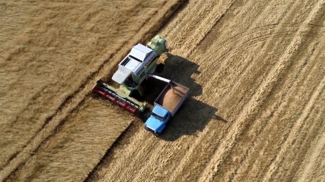 vidéos et rushes de récolte sur le champ de blé combine et machines d'agriculture tracteur. - herbicide