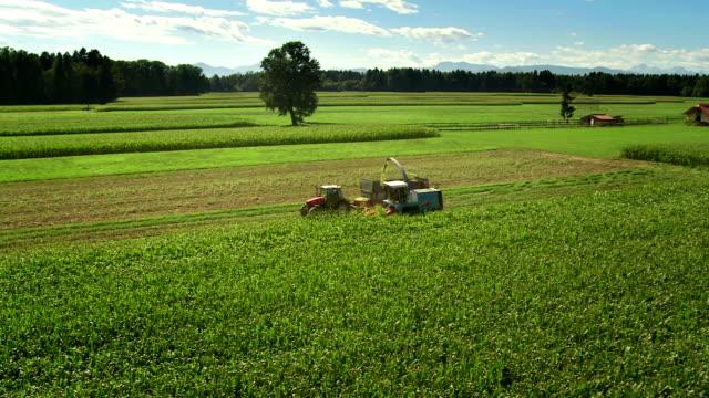 HD: Harvesting The Corn