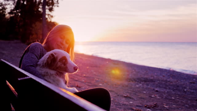 Have fun with your dog. Young woman playing with her Australian Shepherd video