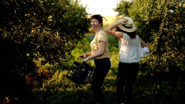 Having fun at harvest time in orchard
