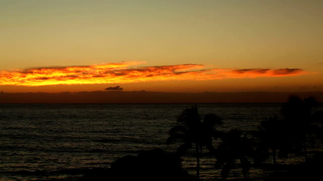 Hawaiian Sunset: Palm Trees, Ocean and Orange video