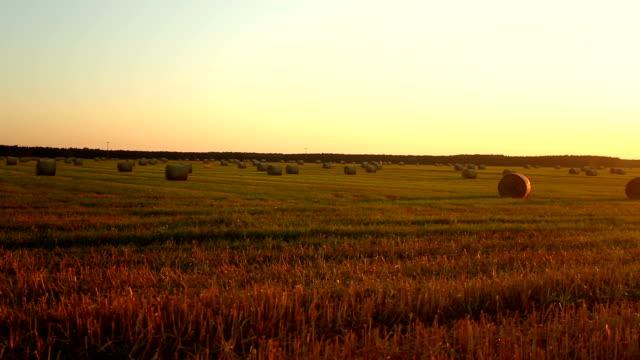 Hay Bales At Sunset video