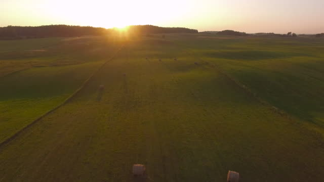 AERIAL: Hay Bales At Sunset video