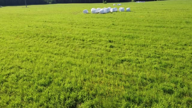 干し草は、ホーンフィールドビデオに巨大なバッグに詰め ビデオ