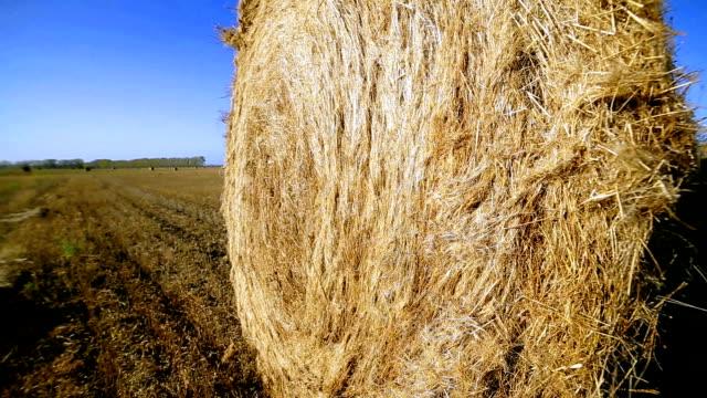haystack in autumn summer field, outdoor video