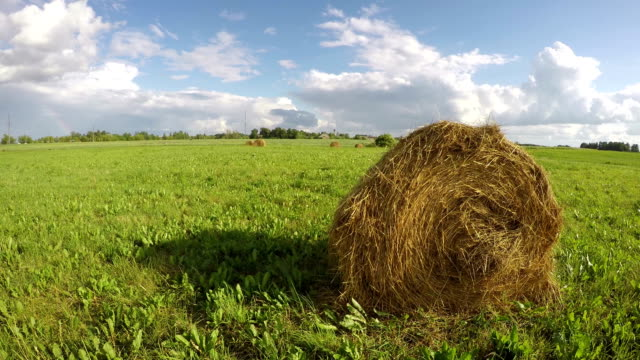 Haystacks in the meadow, time lapse video