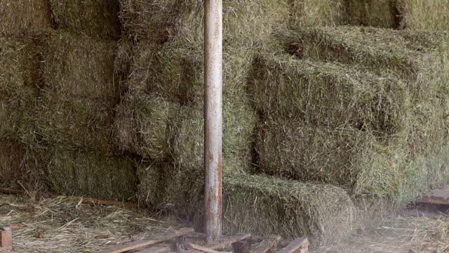 Haystacks in warehouse storage. Close-up. video
