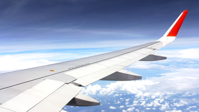 HD:Airtravel Timelapse HD:Airtravel Timelapse animal wing stock videos & royalty-free footage