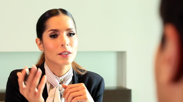 HD:Businesswoman presenting her to business partner. video
