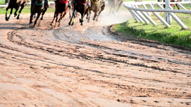 hd:horse race. - horse racing stok videoları ve detay görüntü çekimi