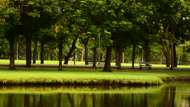 HD:Park with green lawn and lake in the city video