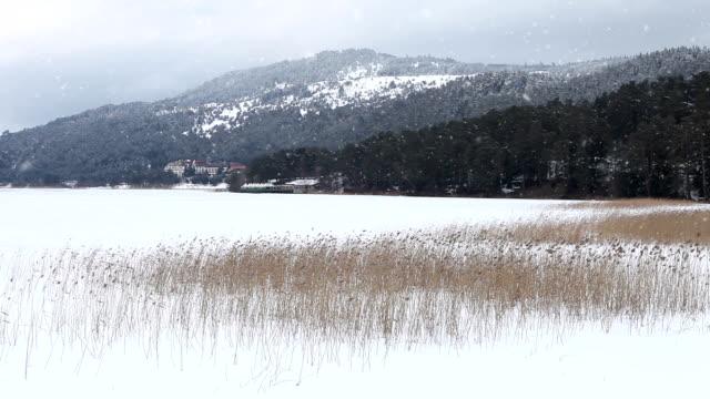 HD:Snowy Winter Landscape video
