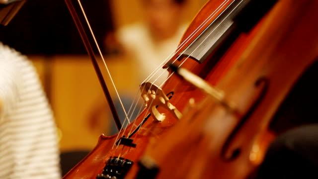 HD:Violin cello players. video