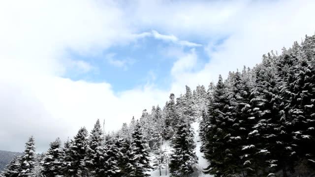 HD:Winter Landscape Pro Bandwidth Recording, Bolu, TUYRKEY shivering stock videos & royalty-free footage