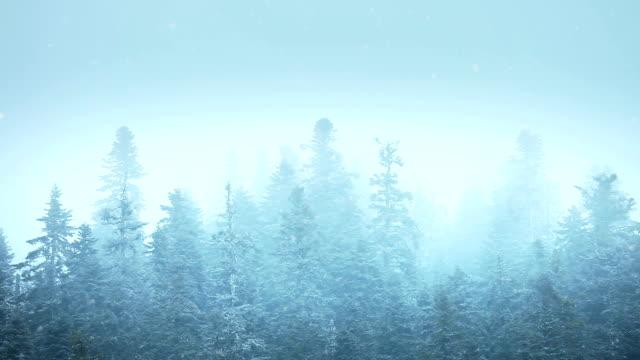 HD:Winter Landscape video