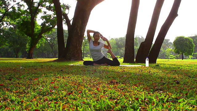 HD:Women practicing of yoga in the park. video