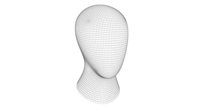 Head Head wire mesh stock videos & royalty-free footage