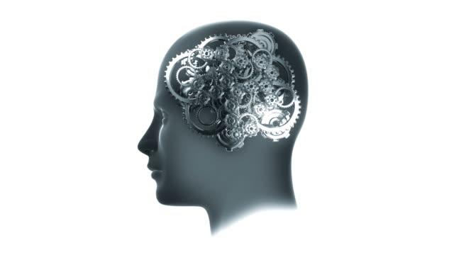 Head with Gears animation Head containing animated gears suggesting thought and intelligence wisdom stock videos & royalty-free footage