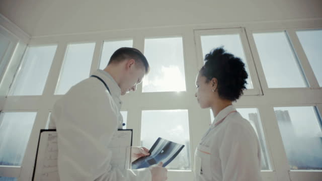 Healthcare, medical: Doctors met in a clinic or hospital, discussing and looking x-ray. Hospital, profession, people and medicine concept: Doctors meeting at medical office. scandal abc stock videos & royalty-free footage