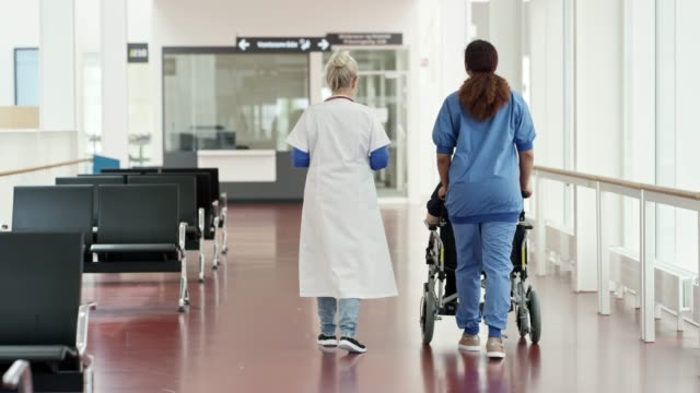 Healthcare workers with patient on wheelchair Rear view of doctor walking with nurse pushing patient on wheelchair. Female healthcare professionals are with patient in corridor. They are working at medical center. pushing wheelchair stock videos & royalty-free footage